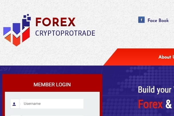 Crypto or forex