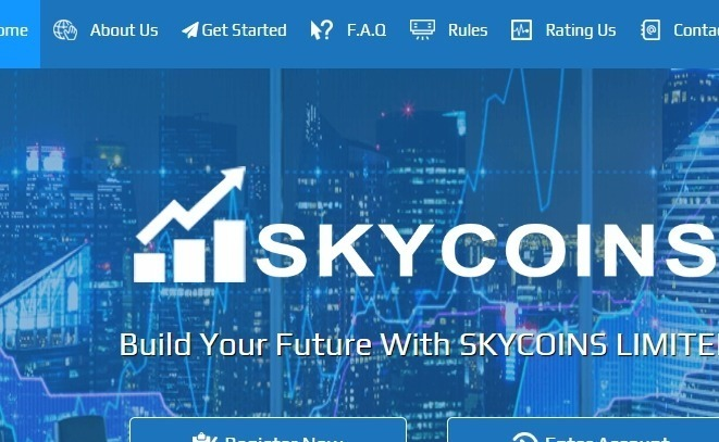 skycoins review